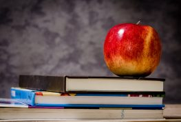 UW STOUT Alum Awarded for Classroom Work in MN