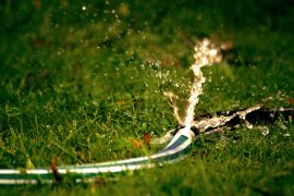 HOSES OFF: WATER BAN BACK ON