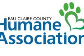 WOMAN ACCUSED OF EMBEZZLEMENT FROM HUMANE ASSOCIATION