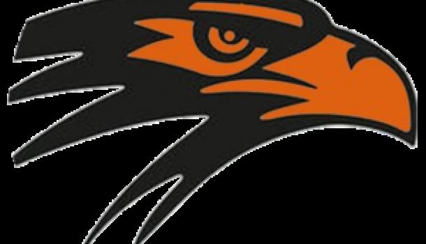 BLACKHAWKS COULD GREEN LIGHT NEW HIGH SCHOOL