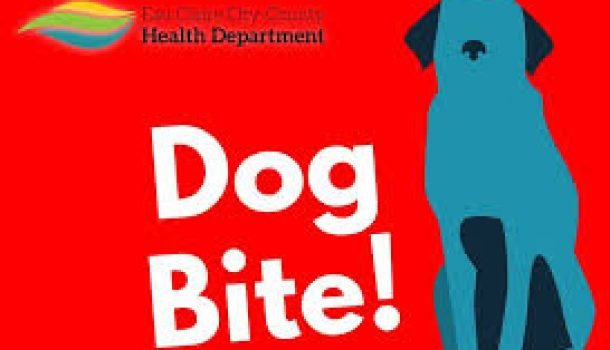 EC Health Dept. Looking for Dog After Bite Incident