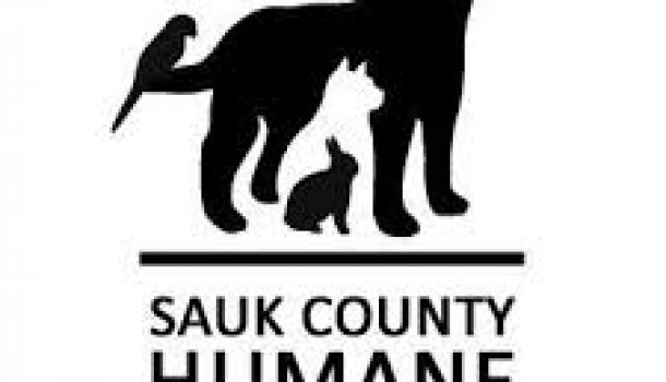 RESCUERS SEARCH FOR OWNER IN ANIMAL ABUSE CASE