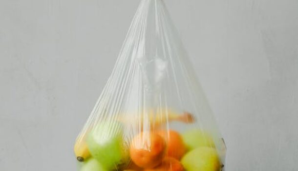 Minneapolis Plans to Charge for Disposable Bags